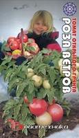 Биотехника Томат Роза ветров