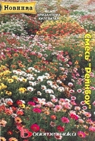 Биотехника Хризантема килеватая Смесь расцветок «Рейнбоу»