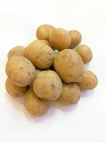 Коломба, семенной картофель
