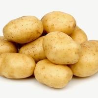 Импала, семенной картофель
